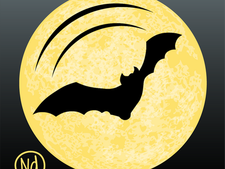 The Bat App is Now Available on the App Store!