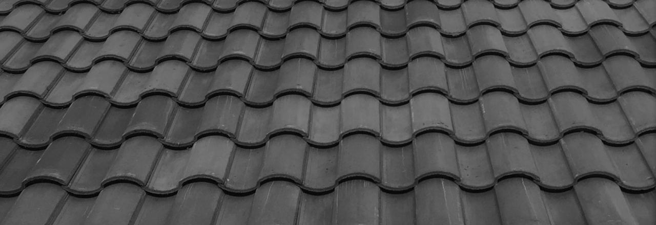 Roof STile.jpg
