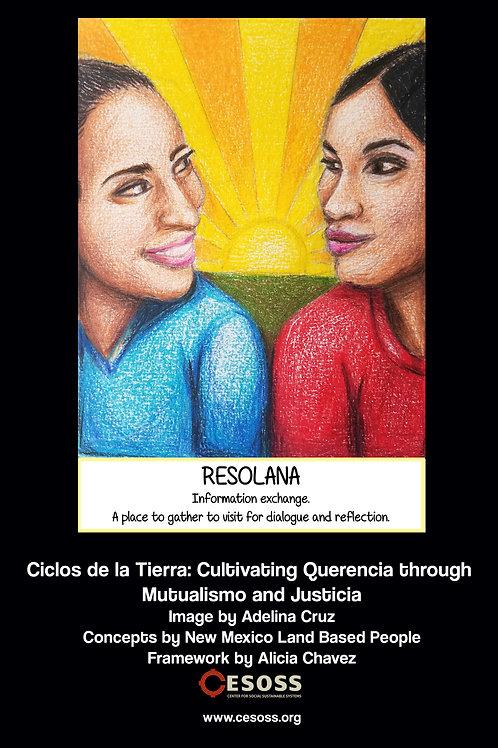 Ciclos Curriculum Posters - Bundle (12x18)
