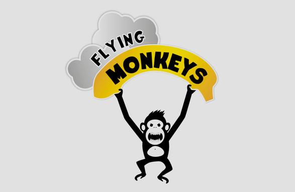 Logo team parachutistes