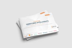 Guide Territoire Intelligents