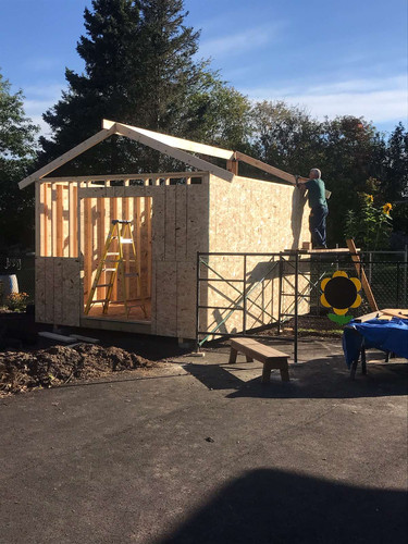 Seamus building shed