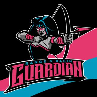 Guardian Copy.png