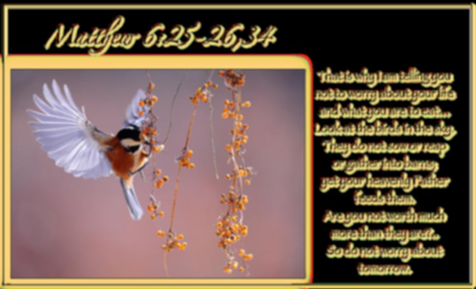 Matthew 6_Small.png