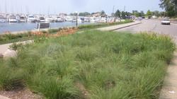 Michigan City Marina