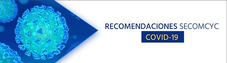 secomcc recomendaciones.PNG