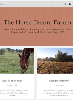 The Horse Dream forum