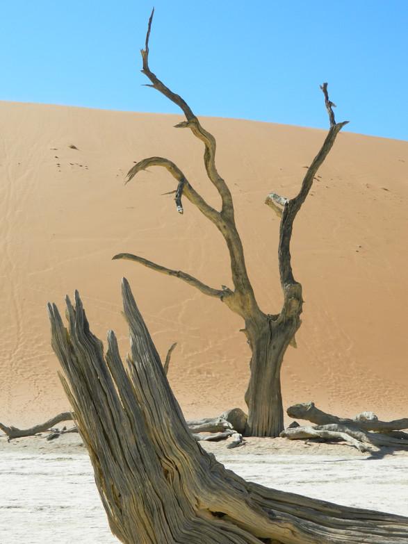 'Desert' - Sossusvlei, Namibia