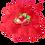 Thumbnail: Toppingcream Fresa