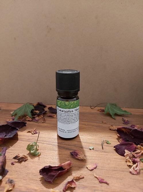 Eukalyptusöl 10 ml