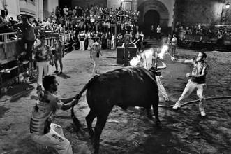 Festejos taurinos en Alpartir del 16 al 20 de junio.