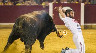 Feria de Festejos Populares de Zaragoza 2019