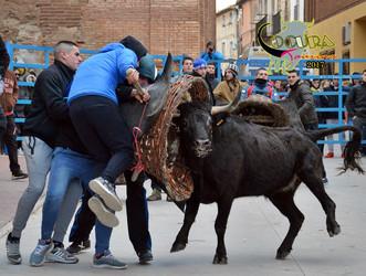Pozuelo programa festejos taurinos para San Jorge. Horarios.