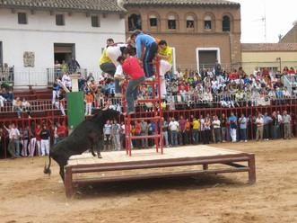 Festejos Taurinos en La Almunia, enero 2017.