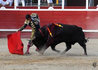 El TSJ de Valencia ratifica que los alcaldes no pueden prohibir los toros
