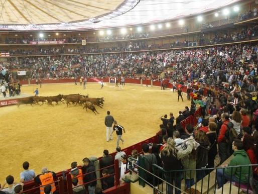 Normativa taurina en Aragón con Nivel de Alerta 2
