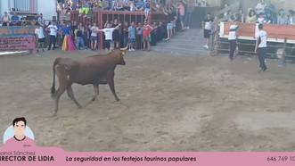 Festejos taurinos en Alpartir del 21 al 23 de junio