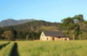 farmhouse beauty.jpg