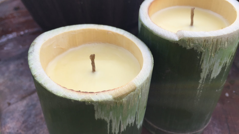 Bamboo Zen Organic Beeswax Candles (Two Candles)