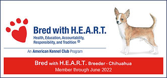 Bred with heart banner 2021.jpg