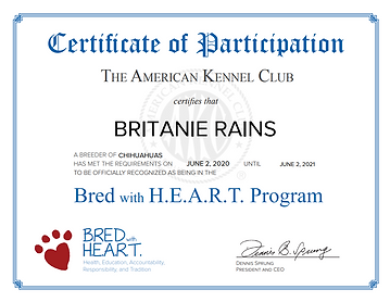 BRed with heart certificate.PNG