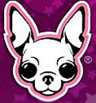 famous Chihuahua.PNG