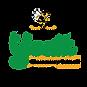 YES_Logo_full_4x.png
