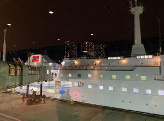 2019.11/14-17 御蔵島ラストドルフィンツアー
