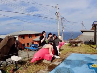 2017.11/3-5 御蔵島ドルフィンスイムツアー