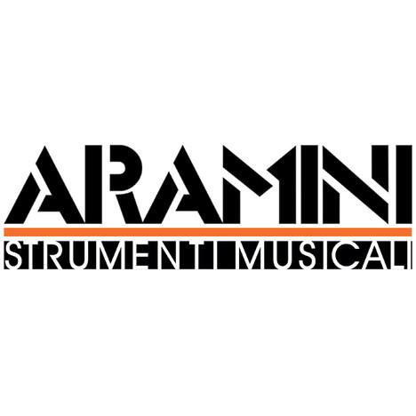 ARAMINI