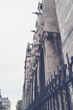 Paris dtl