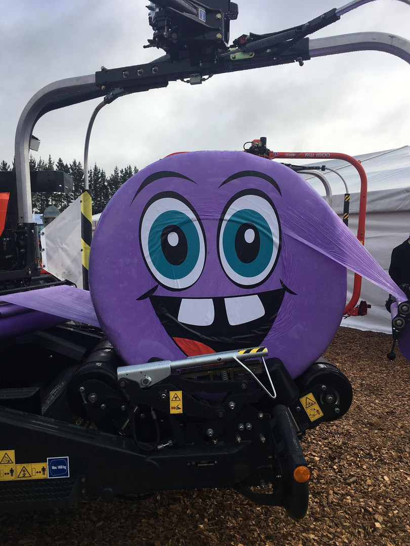 Purplebale with face1.jpg