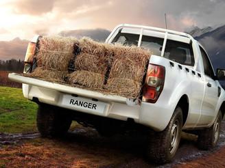 Xe bán tải chở được bao nhiêu kilogram, và những điều cần biết theo quy định mới từ 1/7/2020.