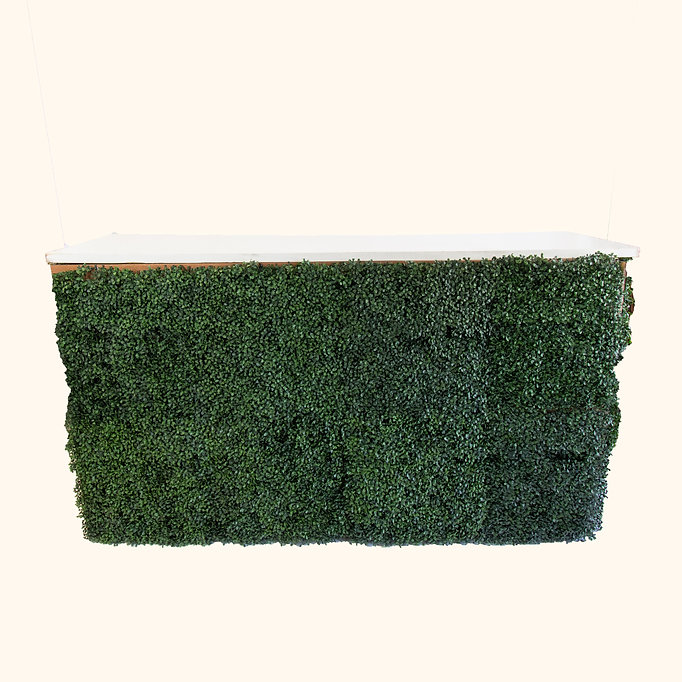 Boxwood Bar with White Top