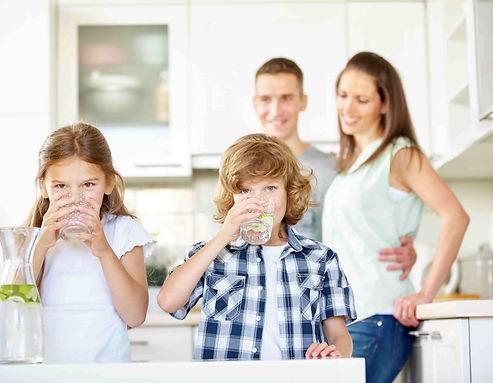 natürliche Sharefrucht Gesundheit Wohlbefinden Verdauung