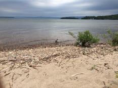 Harmony Beach.