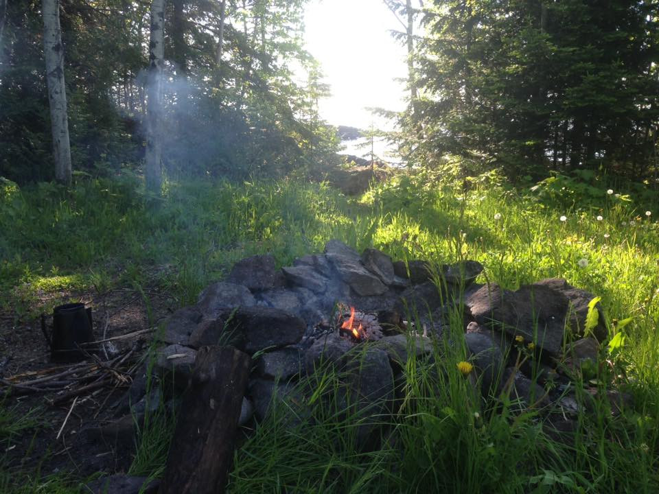 Campfire, sun coming through the trees.