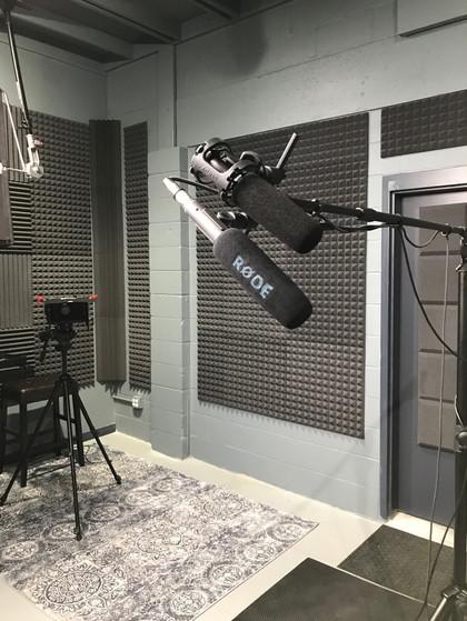 dual mics-2.jpg