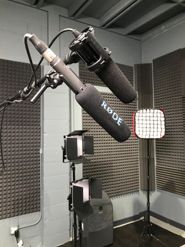dual mics-1.jpg