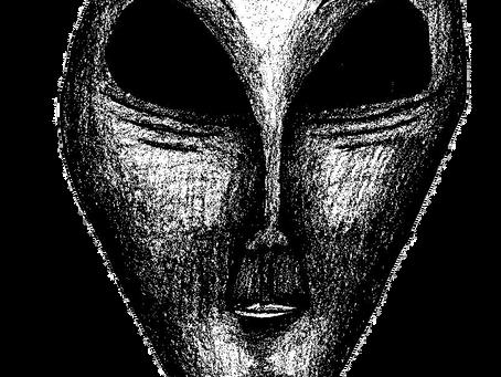 Portrait of a Grey