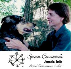 Jacquelin Smith Animal Communicator