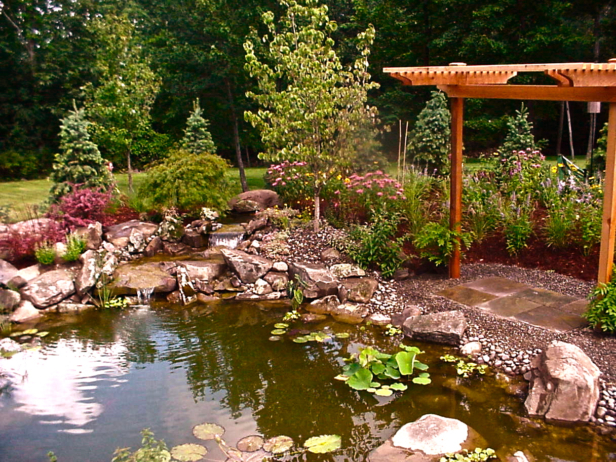 Koi Pond and setting