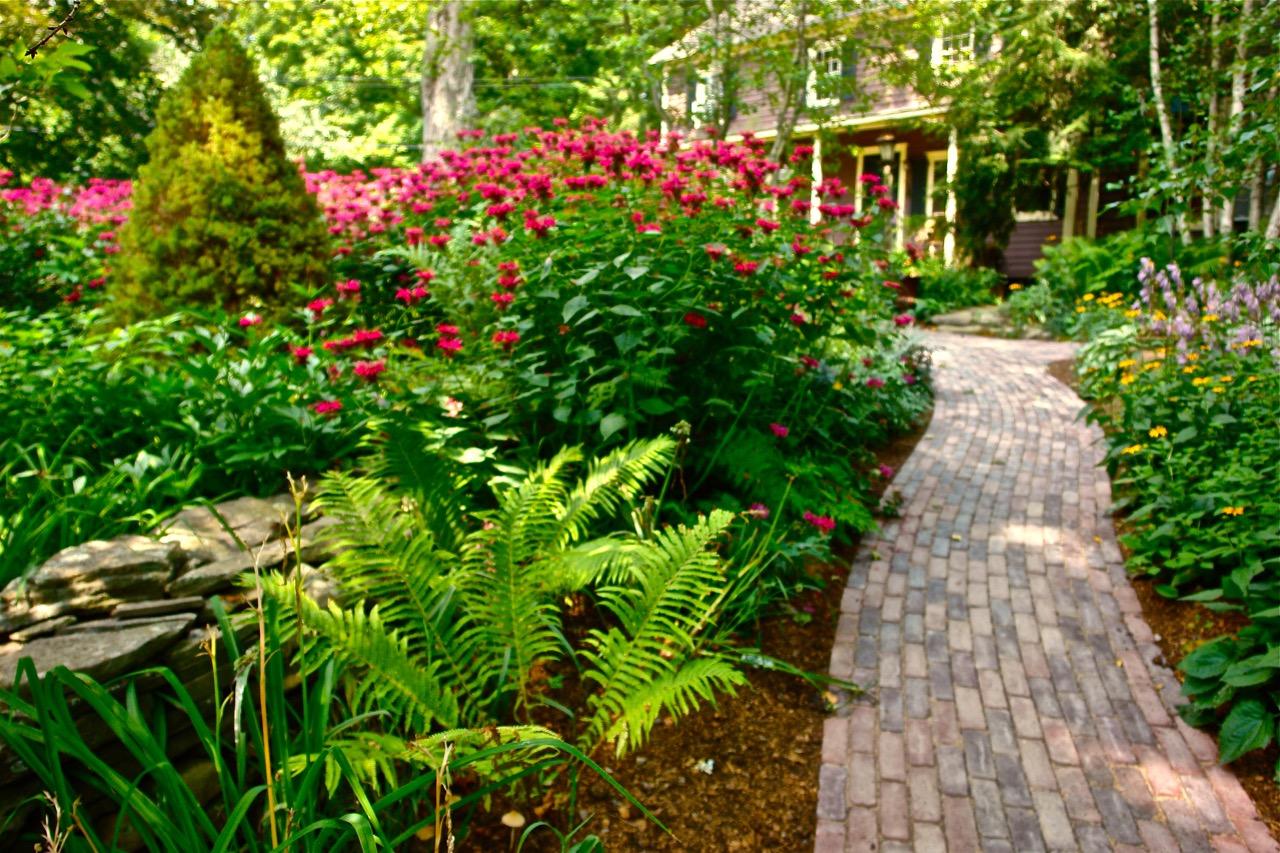 Paths gardens