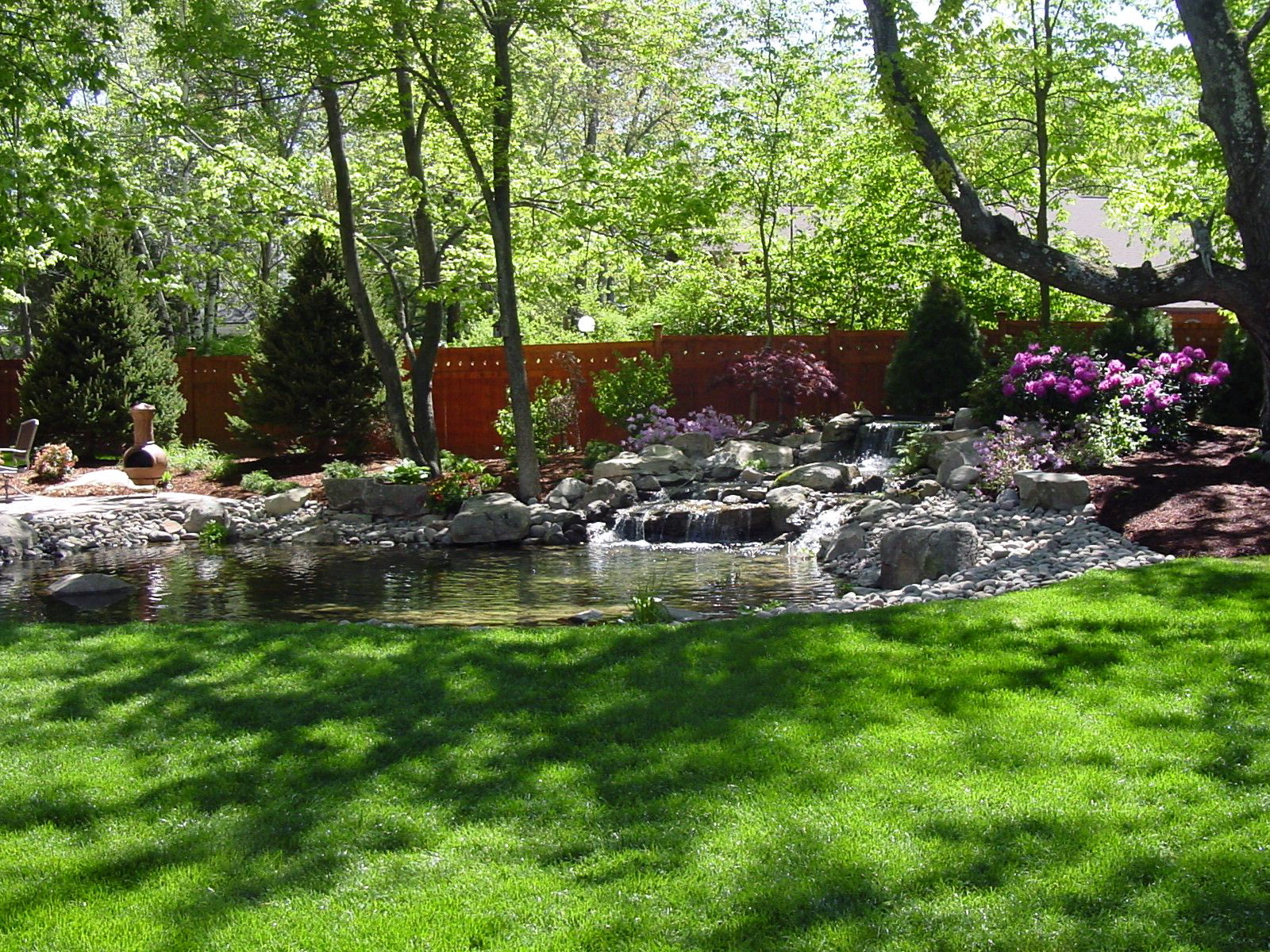 Created on a baron 1/2 acre yard