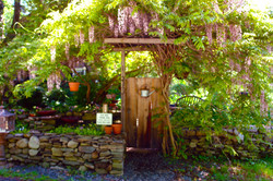 Whimsical Country Garden