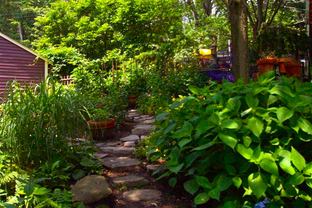 stepping stone.Shade Garden