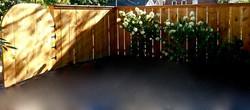 fencing & gate