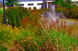 Water feature and Naturali Setting