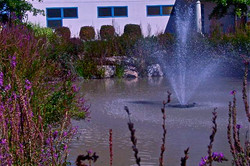 Water feature and setting