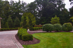 Formal Landscape